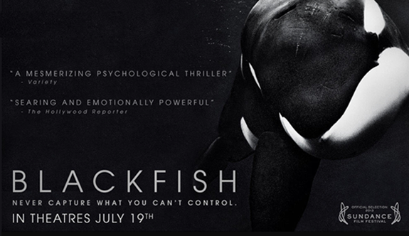 Blackfish_documentary_banner